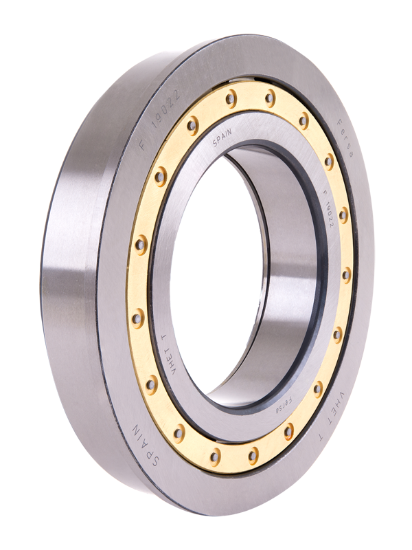 Cylindrical roller bearings (F 19011)