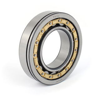 Cylindrical roller bearings (F 19015)