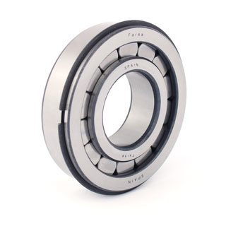 Cylindrical roller bearings (F 19081)