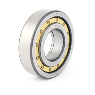 Cylindrical roller bearings (F 19020)