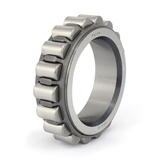 Cylindrical roller bearings (F 19016)