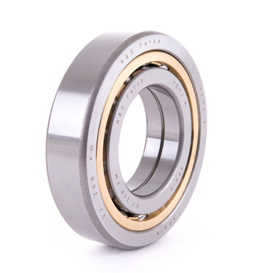 Ball bearings (QJ 309 FM)