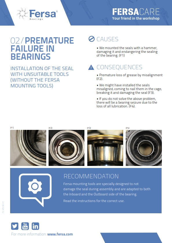 Informative Capsules II: premature failure in bearings